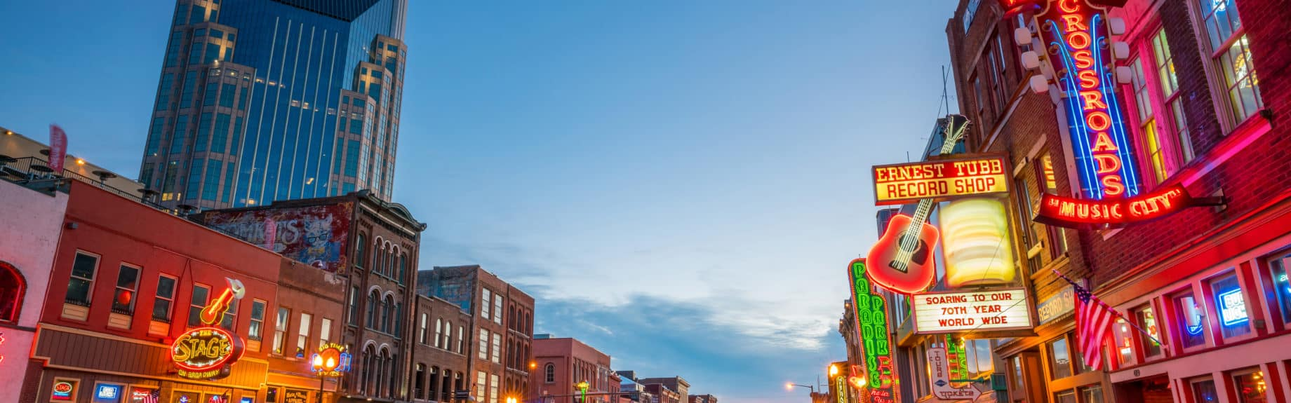 Der Songwriter - Der Nashville-Musikroman von Chris Regez